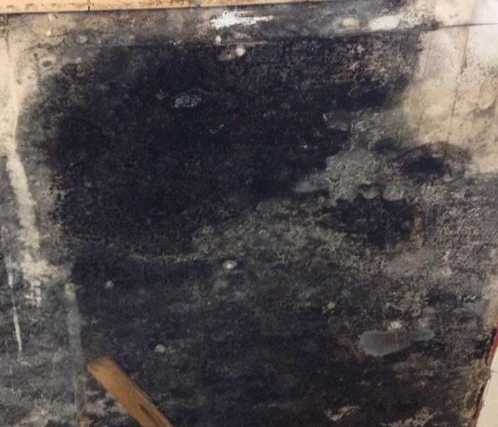 Mold Remediation Bridgetown - Mold damage from water leak Cincinnati