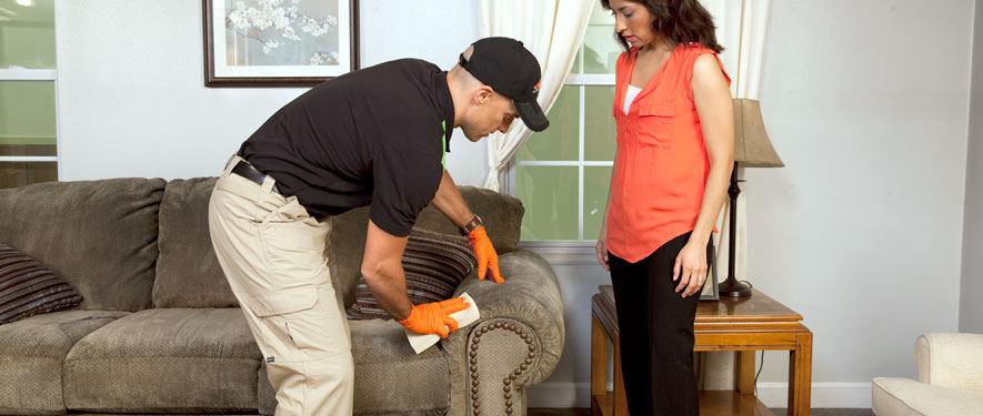 Green Township, OH carpet upholstery cleaning