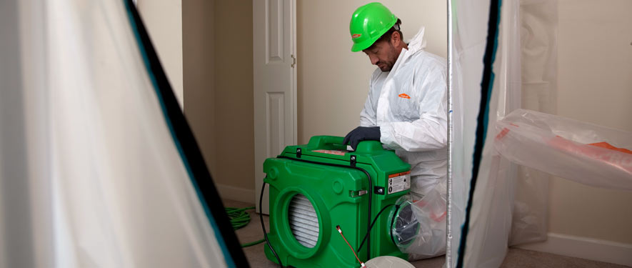 Green Township, OH mold cleanup