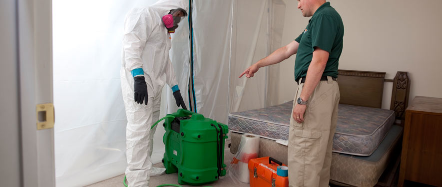 Green Township, OH mold removal process